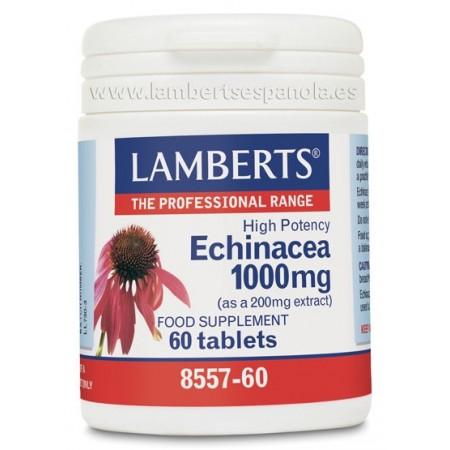 Echinacea 100OO mg.