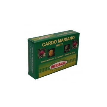 Cardo Mariano Forte ecológico