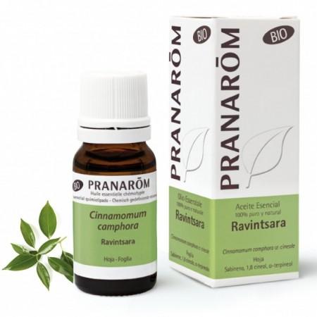 Ravintsara bio aceite esencial