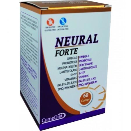 Neural Forte