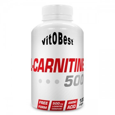 L-Carnitina 500